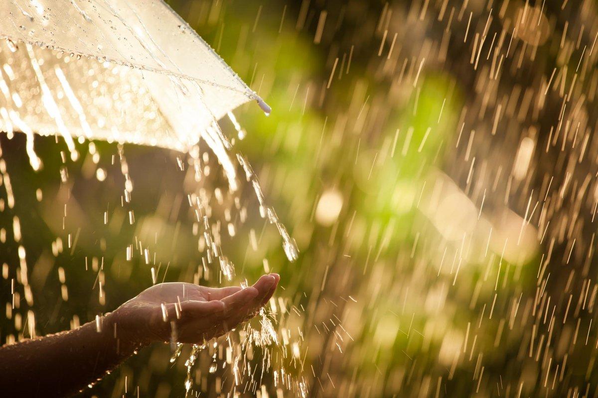 Дожди и зной поделят неделю: что ждать от погоды в Каменском районе