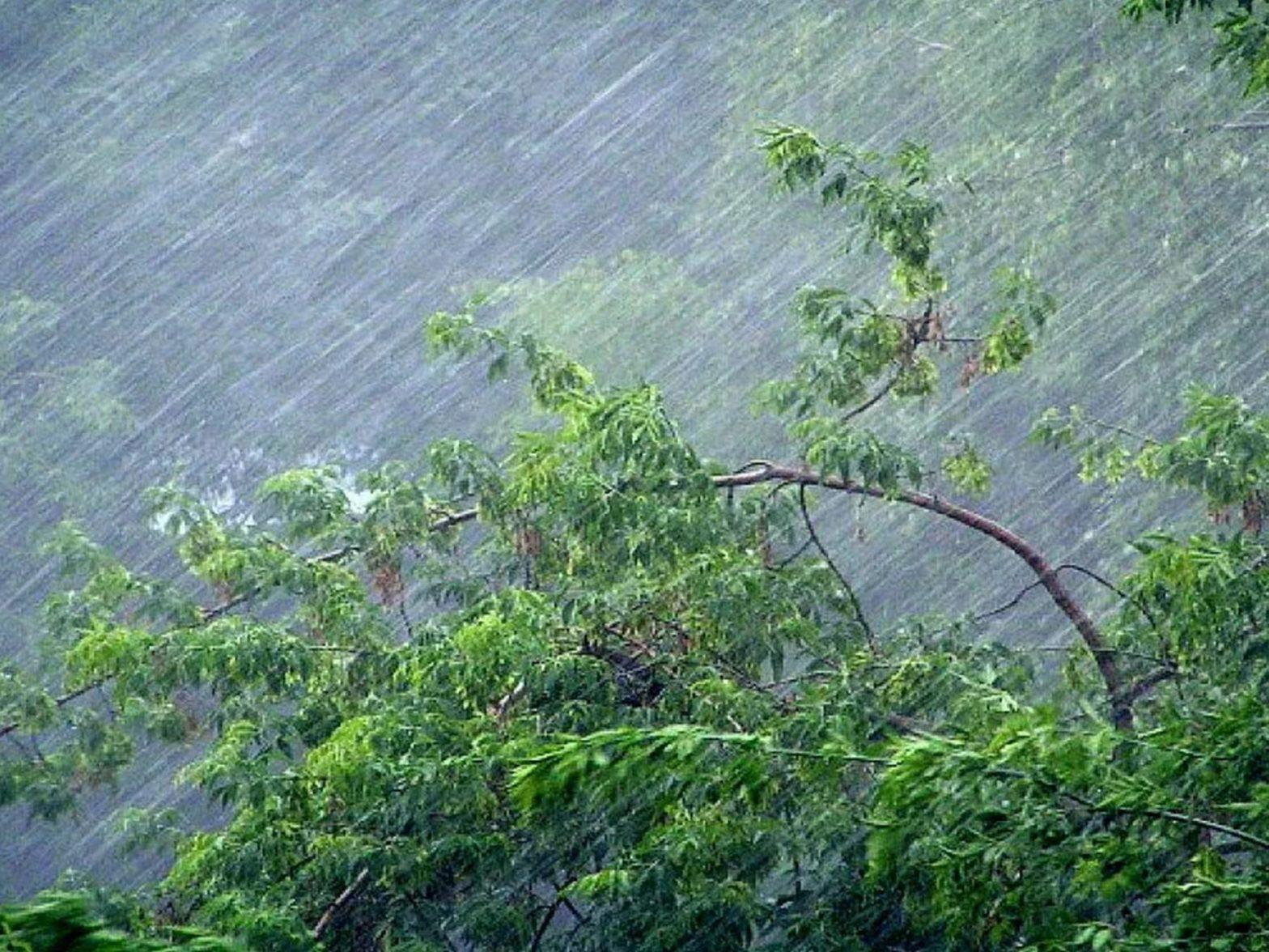 Климатолог объяснил, почему ливни накрыли Ростовскую область