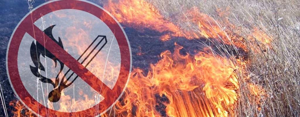 В Каменске продолжает действовать особый противопожарный режим. Он продлится до 17 октября.
